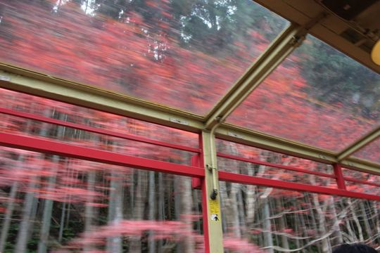 kyoto20_10.jpg